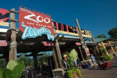 TOP 10 BIGGEST ZOOS IN THE WORLD 2020- ALL YOU NEED TO KNOW