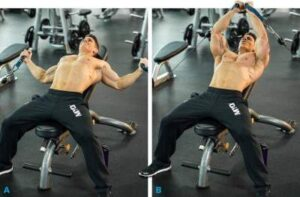Best Workouts For The Chest Top 10 Tips