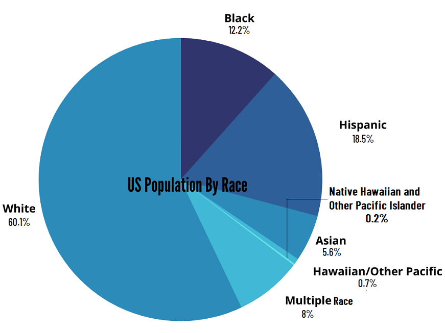 US Population By Race Pie Chart
